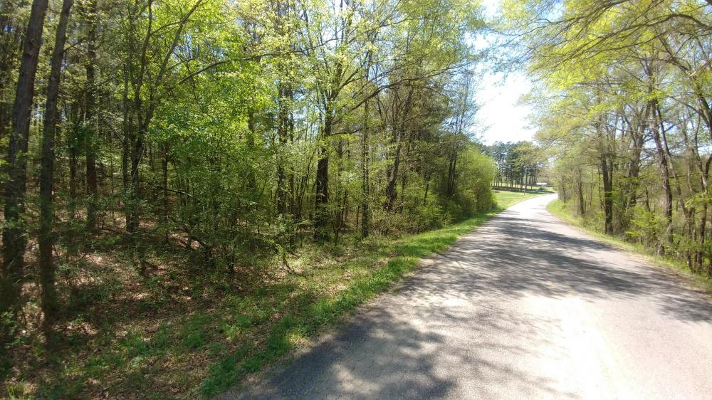 Hot Springs Residential Development Property in Garland County, AR