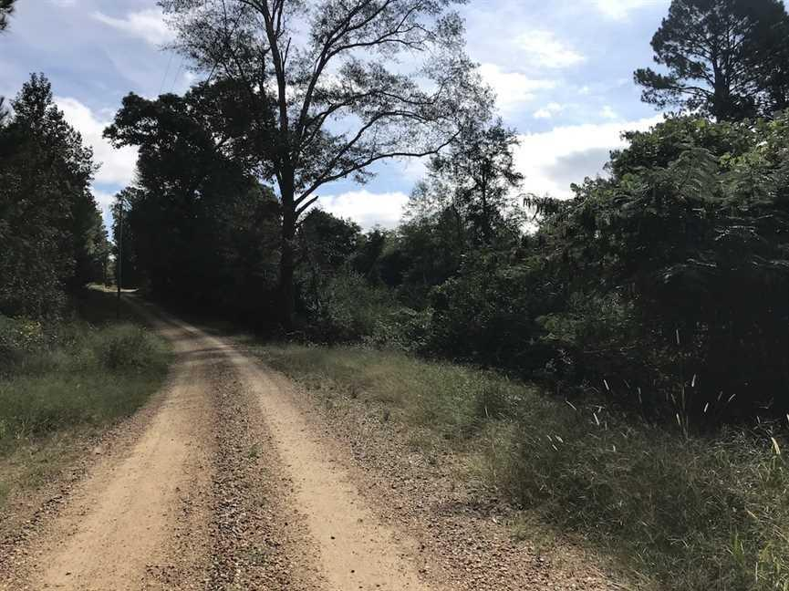 Hunting and Recreational Land With Fixer House Near County Line in Neshoba County, MS