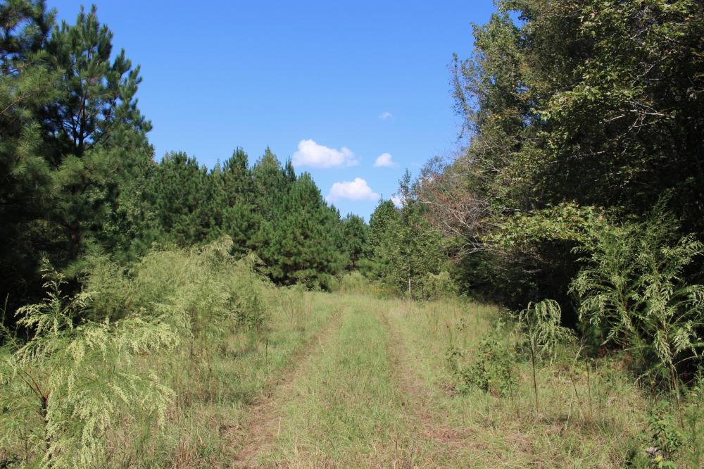 Wheless Drive Retreat in McDuffie County, GA