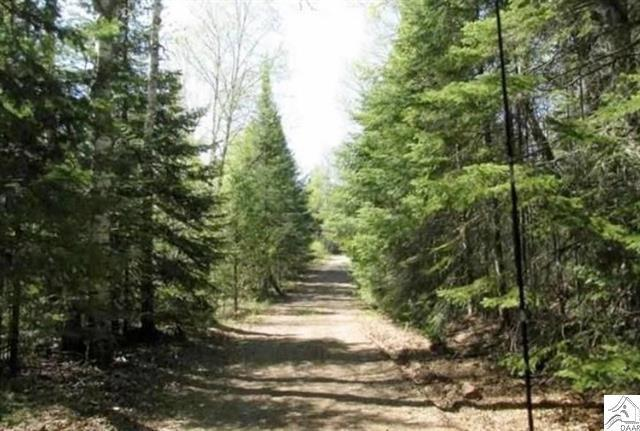 #20 20 Acres Hunting, Recreational, Woods, Timber, Finland in Lake County, MN