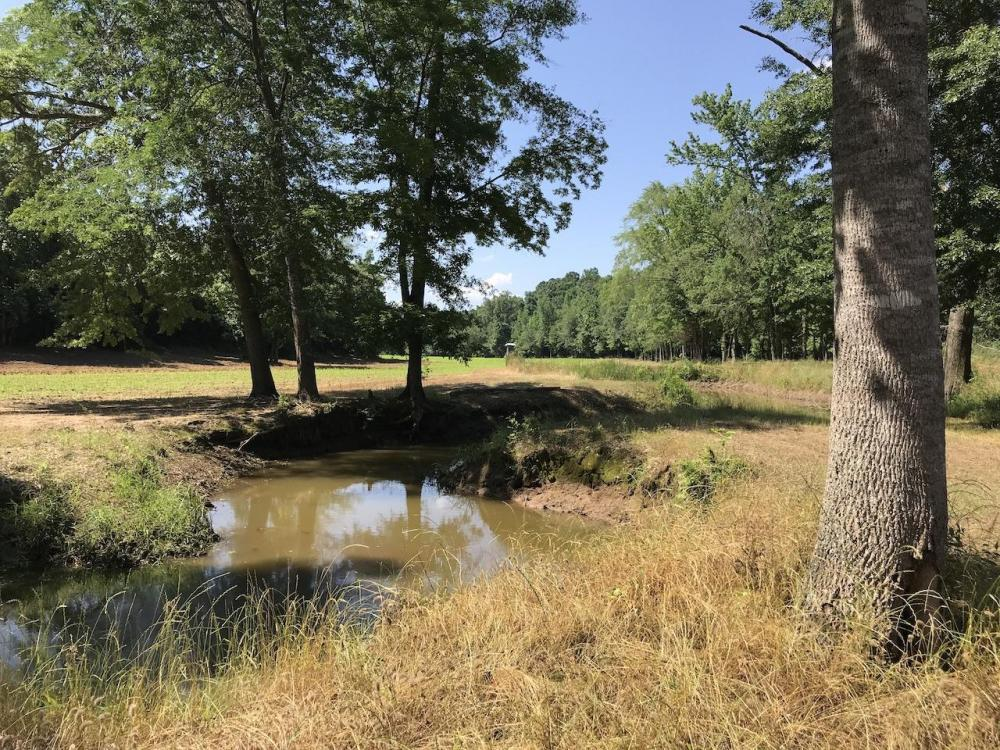 Wahalak Creek Custom Cabin With Pond on 80 Acres With Gigantic Food Plot in Kemper County, MS