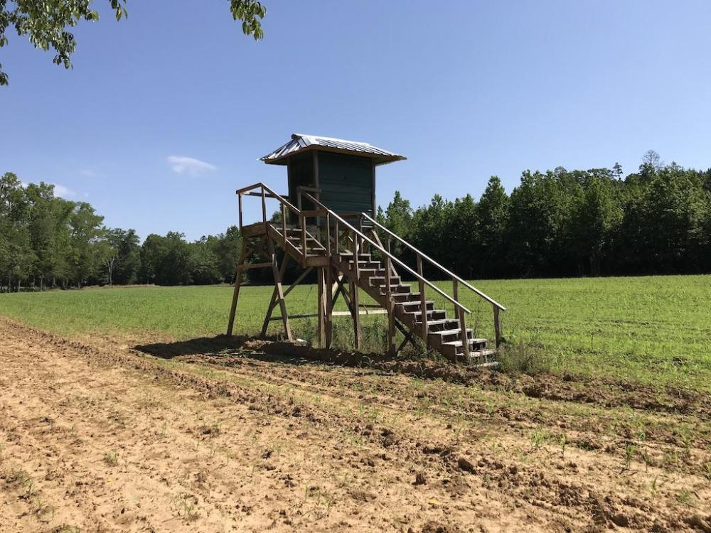 Turnkey Hunting Camp With Cabin, Pond & Lease Between DeKalb and Shuqualak in Kemper County, MS