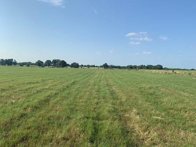 11.5 ac Improved Hay Pasture near Eustace in Henderson County, TX