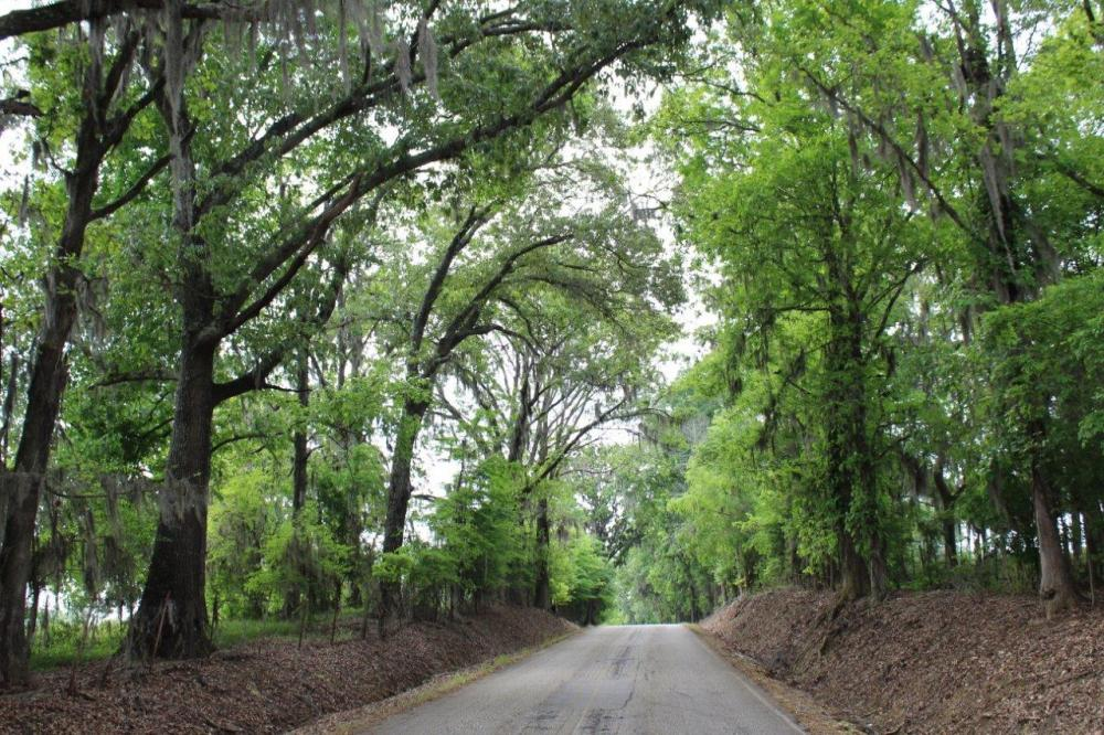 The Seven Bridges Road - South in Montgomery County, AL