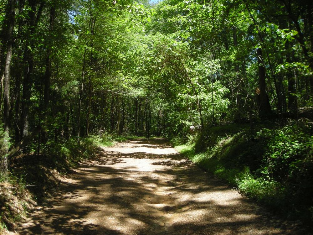 20 Acres of Potential Homesite/Hunting/Recreation in Chattooga County, GA