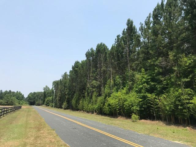Chesney Tract  in Clarendon County, SC