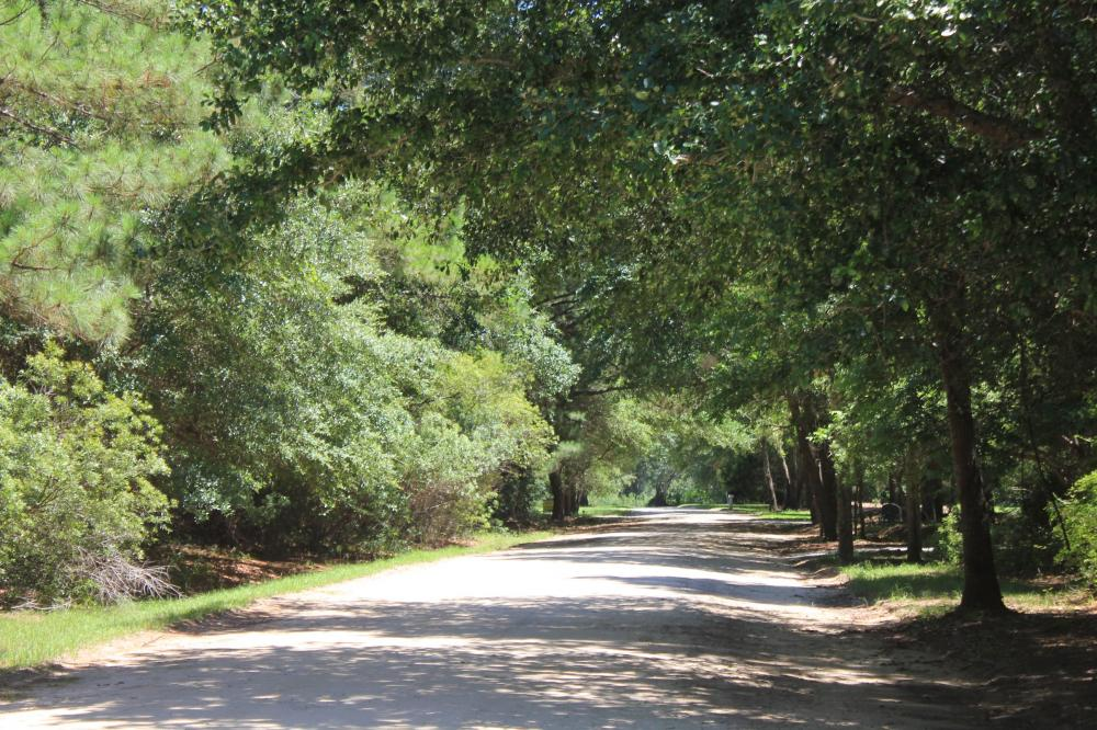 Awendaw Large Lot B in Charleston County, SC