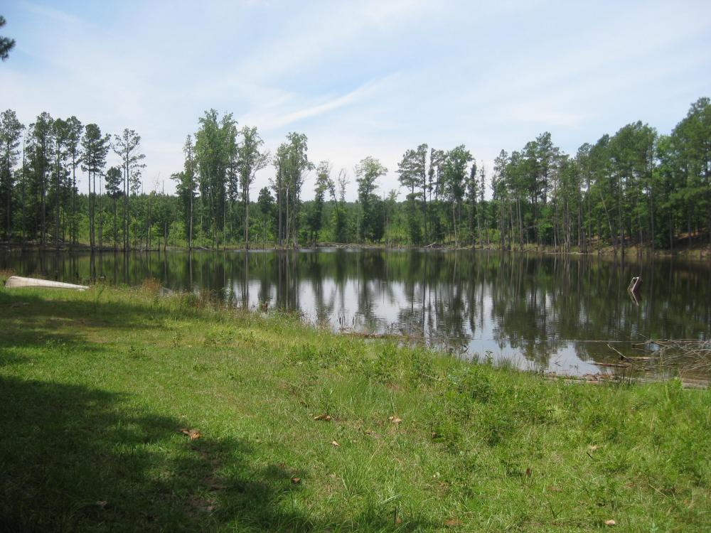 Maybinton Enoree River Timber and Hunting in Newberry County, SC