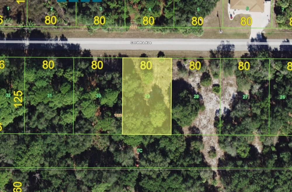 Awesome lot in Port Charlotte in Charlotte County, FL