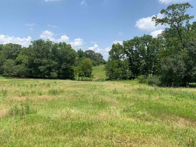 110 Acres 3 ponds, Timber, Great Building Site near Canton  in Van Zandt County, TX
