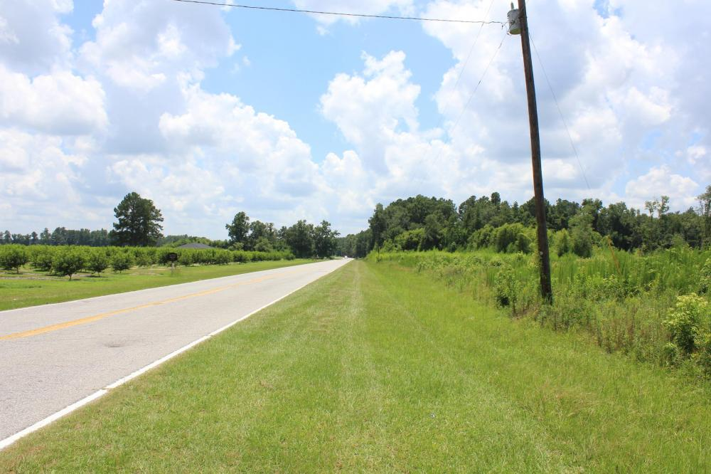 Santee Area Large Acreage Investment in Orangeburg County, SC