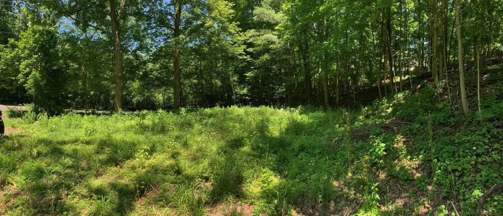 Prime Homesite Near Bolander Woods! in Marion County, IN