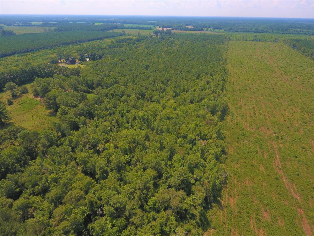 264 Timber Tract in Greene County, NC