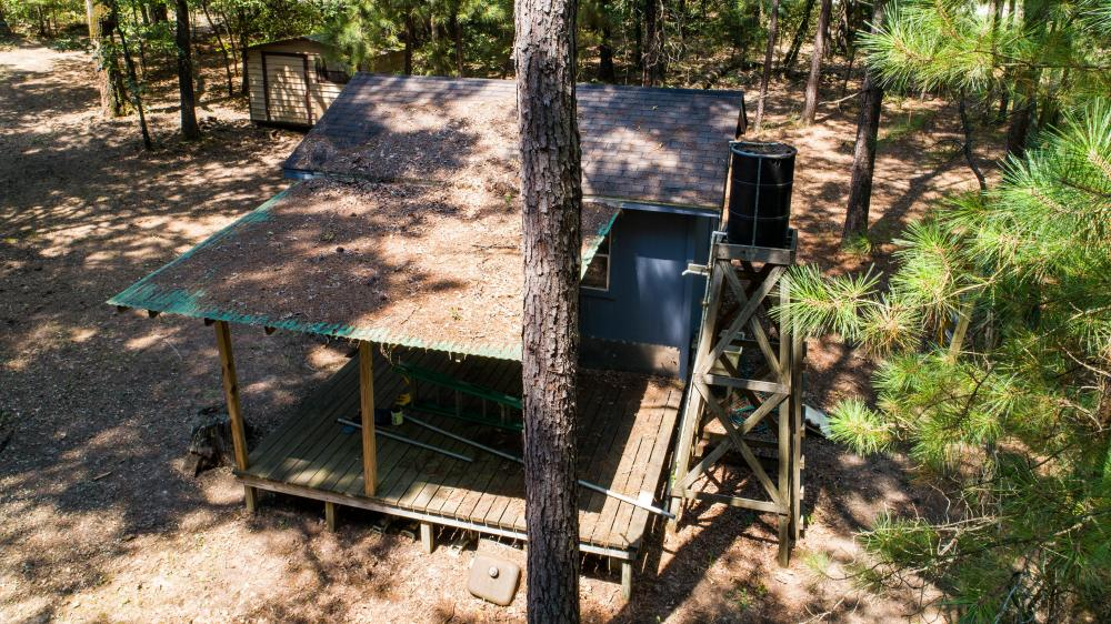 36 acre Timber Tract with Hunting Cabin in Red River County  in Red River County, TX