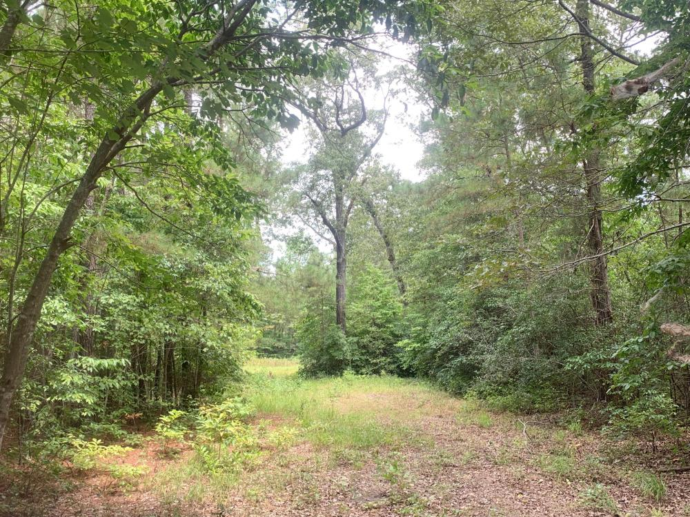 Fayetteville 10+/- Ac Homestead in Cumberland County, NC