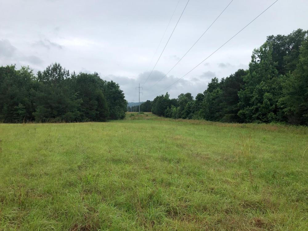76 Acres Union Road Somerville Alabama in Morgan County, AL