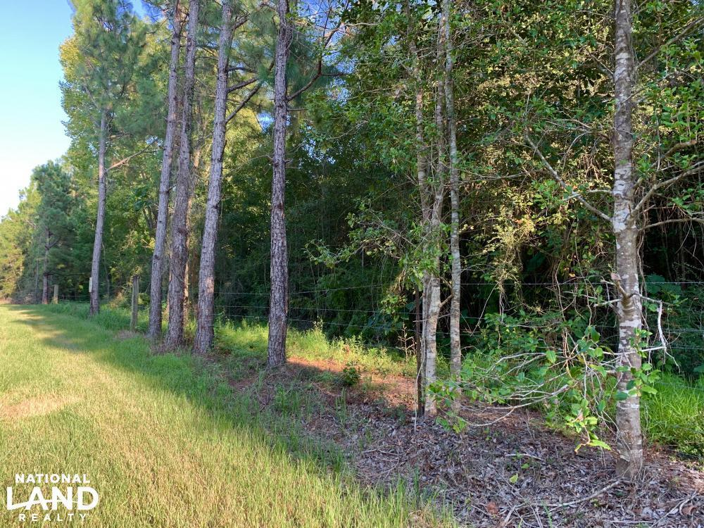Modelle Bryars Road Homesite B in Baldwin County, AL