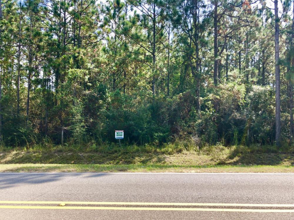 County Rd 65  14 Acre Home Site  in Baldwin County, AL
