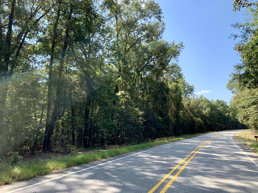 Tensaw Homesite & Hunting Retreat in Baldwin County, AL