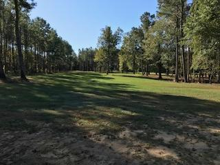 Barnes Recreational and Hunting Tract in Clarendon County, SC