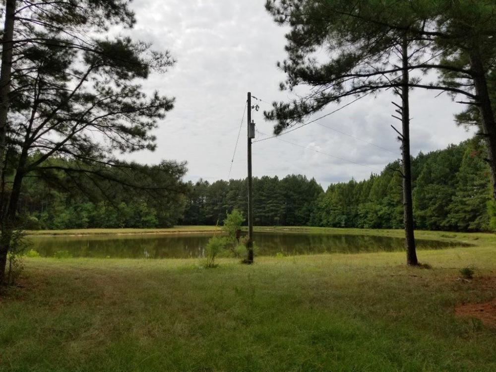 Pretty Branch Road Homesite and Fishing Tract in Sumter County, AL