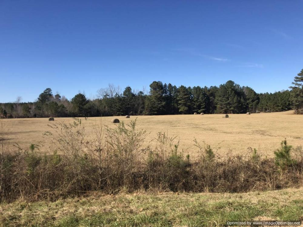 Thomastown Pasture & Timber Land in Leake County, MS
