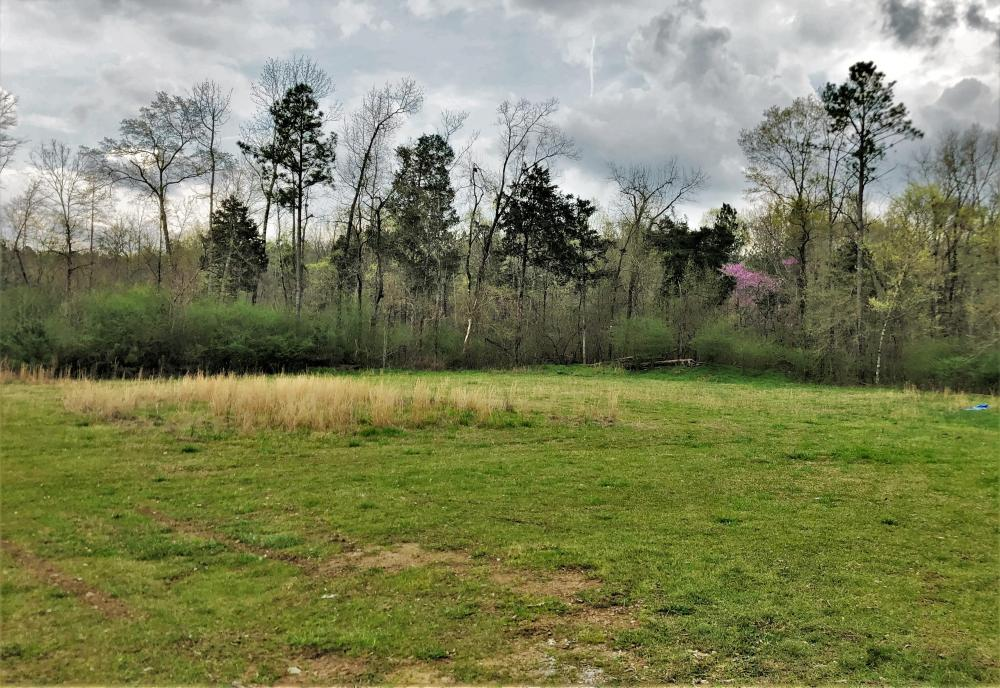 Alabaster Developement Property in Shelby County, AL
