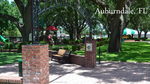 Auburndale Hotel Market Report<br>(Doc 2 of 12)