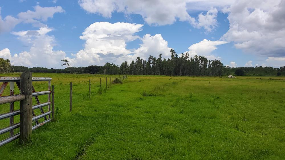 Zolfo Springs Farm and Ranch Land in Hardee County, FL