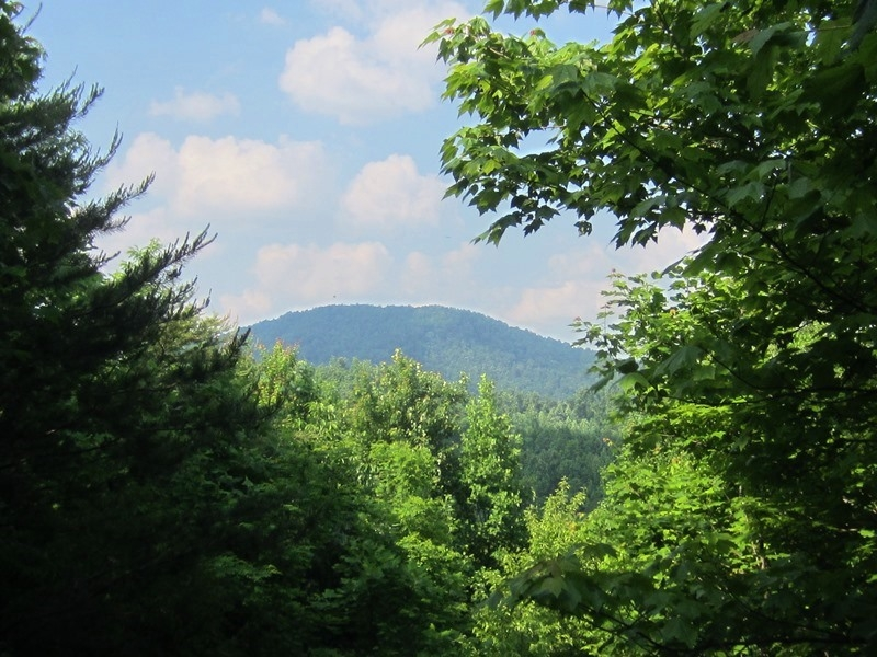 648 Acre Recreational Land With Mountain Views