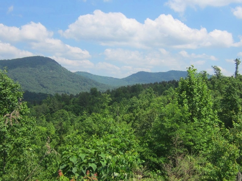 830 Acre Recreational Land With Mountain Views