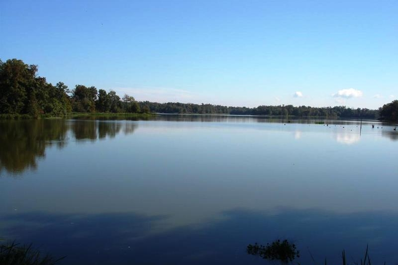 Black Warrior Bay Waterfront Lot