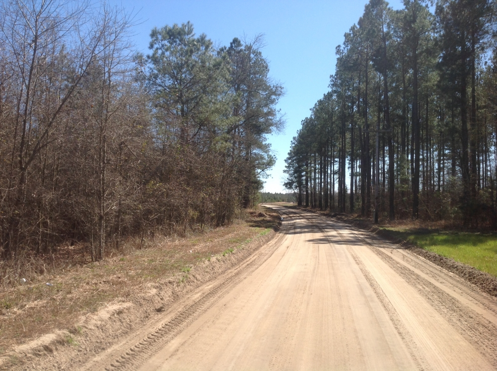Bowman Recreational, Timber & Hunting Tract