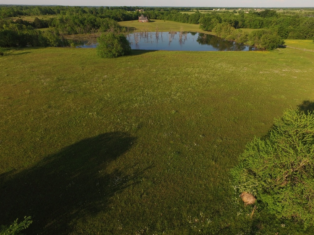 Windhaven Lakes Mini-Farm in Lowndes County, AL