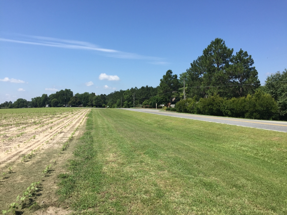 67.13 Acre Prime Residential Development  in Bulloch County, GA