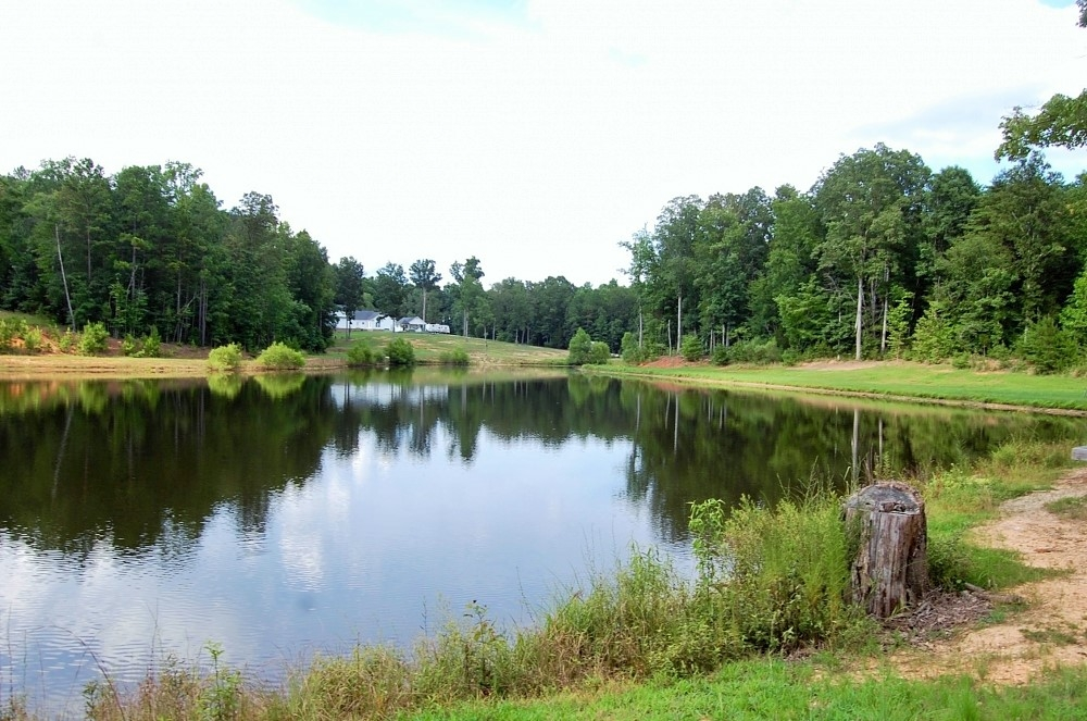 Hunting Property For Sale In Sc