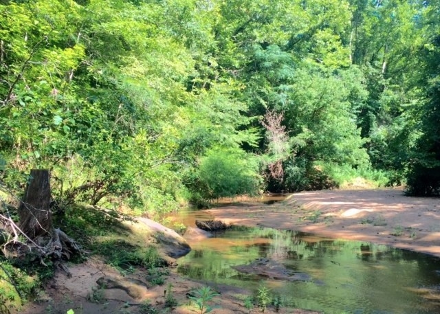 Hunting, Homesite, or Investment Tract in Muscogee County, GA