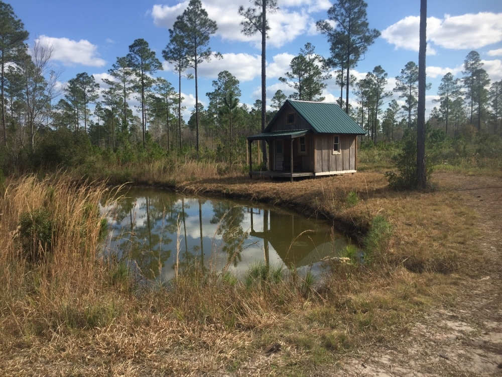 Okefenokee Club Property