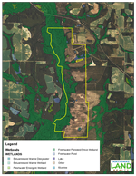 Wetlands Map<br>(Doc 5 of 5)