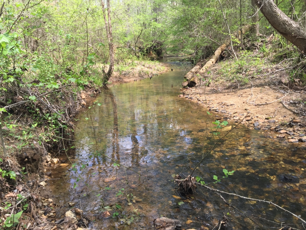 Sweet Water Creek Tract