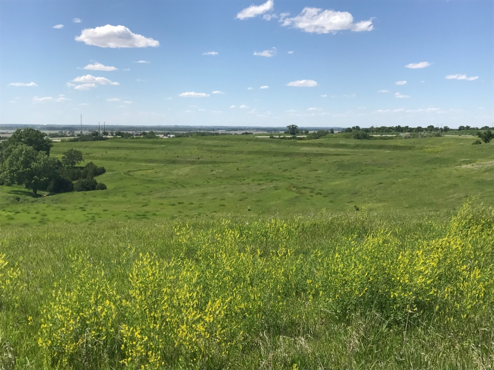Sarpy County Acreage Lot # 1 in Sarpy County, NE