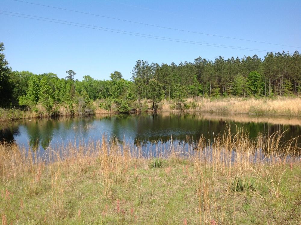 Montgomery County Pond Property