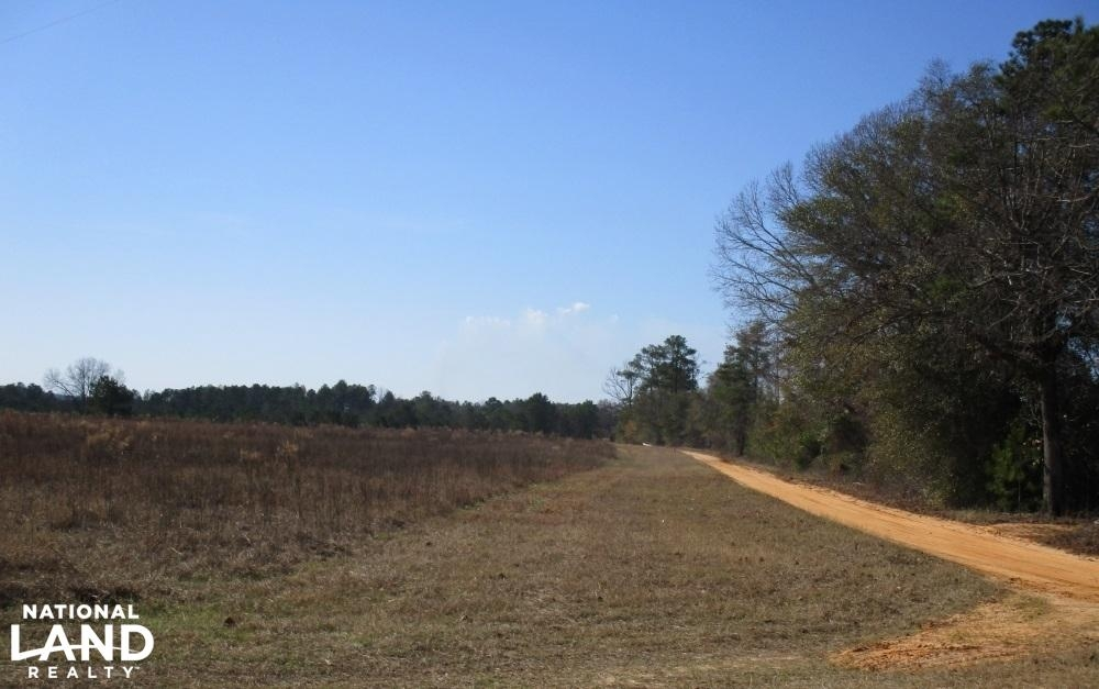 15 Acres Stewart County, GA Farmland