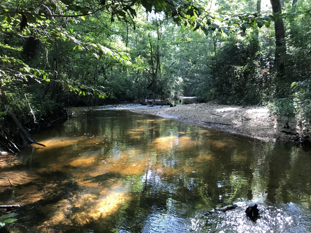 The Choctaw Creek Gosport Tract