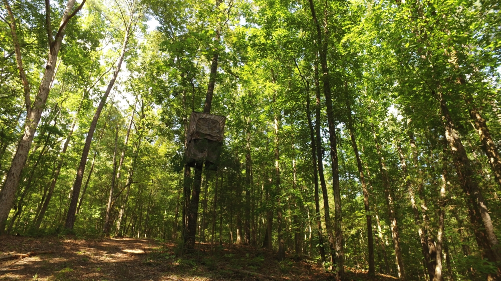 Secluded Recreation Property in McCormick County, SC
