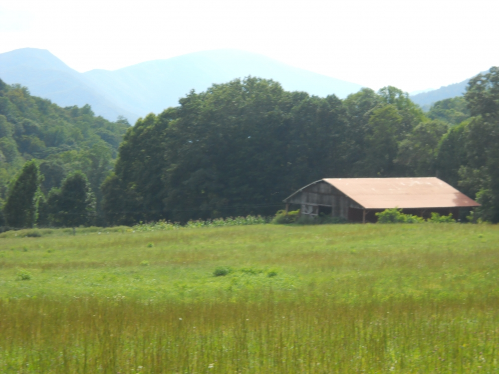 Spectacular Farmland Adjacent to NC Game Lands