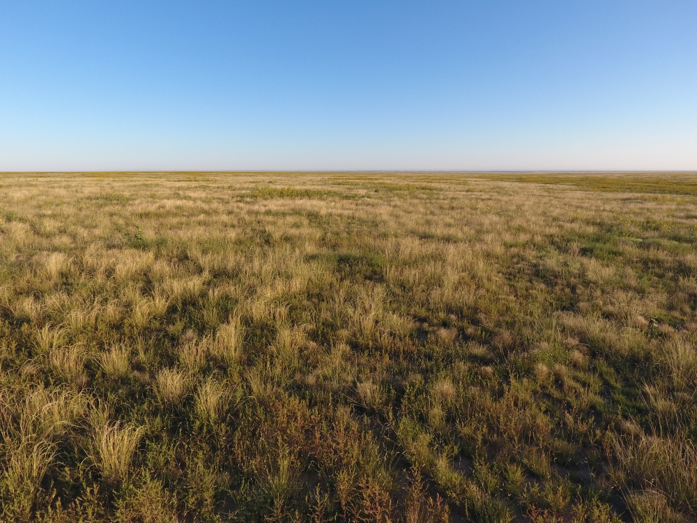 Pasture Land For Sale - Otero County in Otero County, CO
