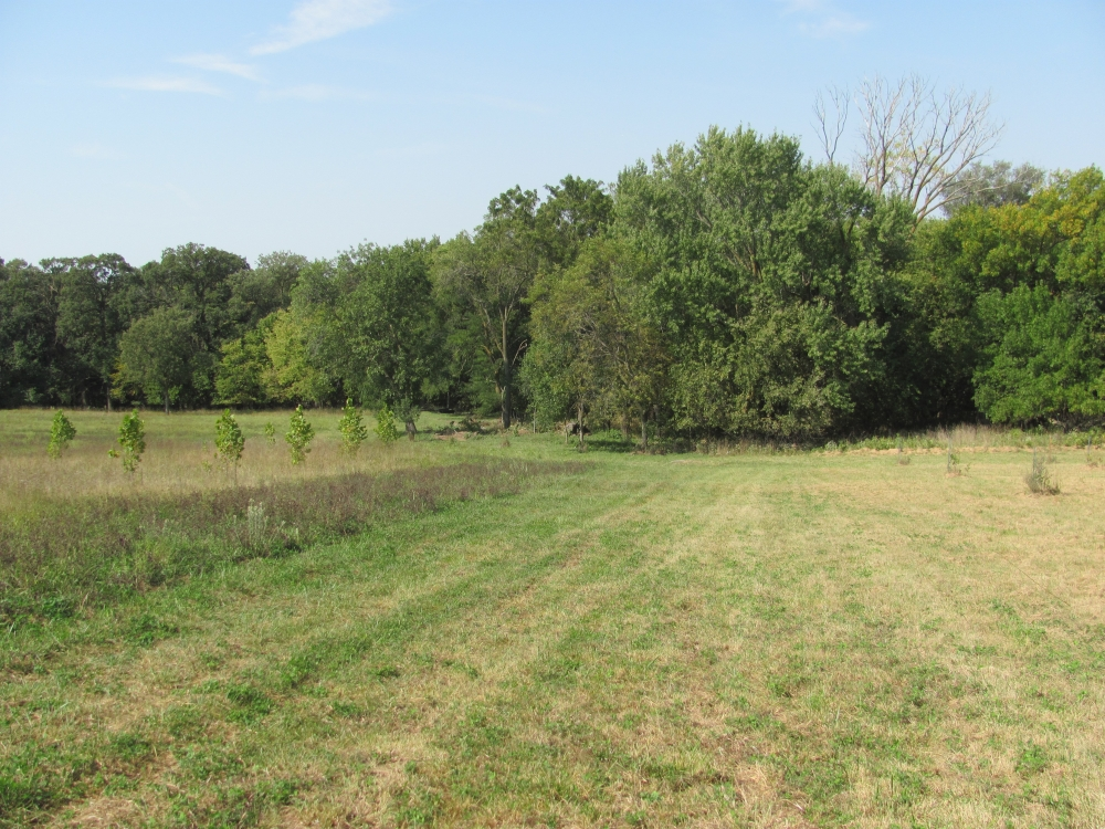 5 acre farm for sale