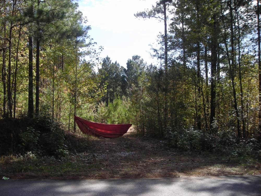 Edna Road Timber Tract (64 Acres) in Haralson County, GA