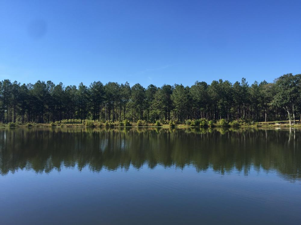 Luverne Weekend Getaway with Cabin and Lake  in Crenshaw County, AL